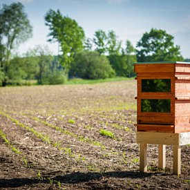 Thermosolar Hive with 2 Deutsch Normal boxes