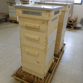 Thermosolar Hive with 4 Deutsch Normal boxes