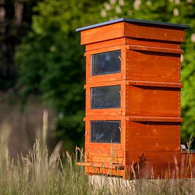 Thermosolar Hive with 3 National boxes - brood, shallow, shallow