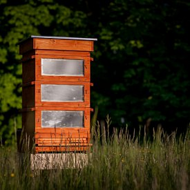 Thermosolar Hive with 3 National boxes - deep, brood, brood