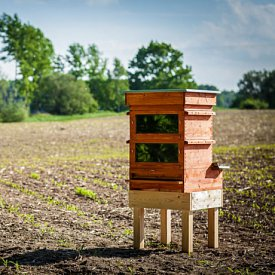 Thermosolar Hive with 2 Langstroth boxes - deep, deep